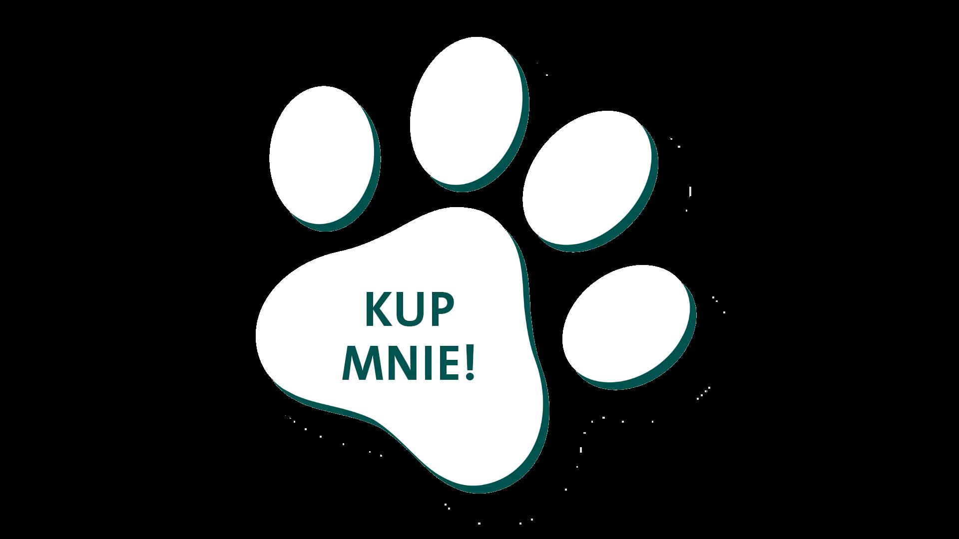 OMNi-BiOTiC Cat&Dog kup mnie